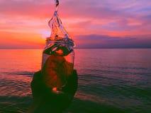 Förälskelse i flaskan Arkivbilder