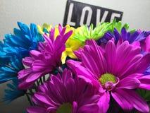 Förälskelse och blommor Royaltyfri Fotografi