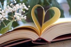 Förälskelse och bok Royaltyfri Bild