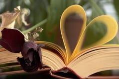Förälskelse och bok Arkivfoton