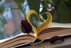 Förälskelse och bok Arkivfoto