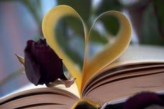 Förälskelse och bok Royaltyfria Bilder