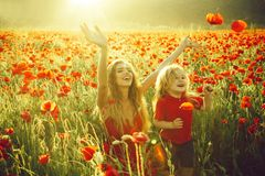 Förälskelse och familj, lycklig moder och barn i vallmofält arkivfoton