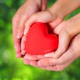 Förälskelse. Valentine Heart i kvinnlig och manliga händer, över naturen royaltyfri bild