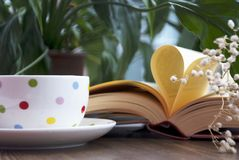 Förälskelsebok och coffe Arkivfoton
