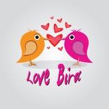 Förälskelsefågel Arkivfoton
