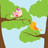 Förälskelsefåglar Arkivbild