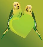 Förälskelsefåglar Arkivfoto