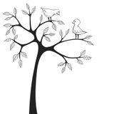 Förälskelsefåglar Royaltyfri Foto