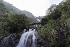Förälskelseförälskelsevattenfall Royaltyfri Foto