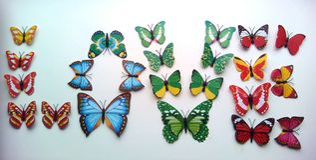 Förälskelsefjärilar Royaltyfria Bilder