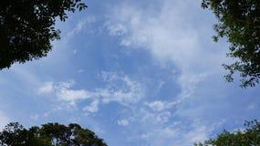 Förälskelsehimmel Arkivfoto
