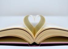 Förälskelsen för böckerna Royaltyfria Bilder