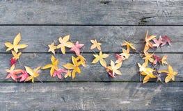 Förälskelsesidaord i trä Royaltyfria Bilder