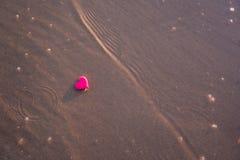 Förälskelsesymbol av hjärta på havsstranden Royaltyfri Fotografi