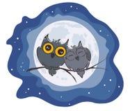 Förälskelseugglor och fullmåne Royaltyfri Foto