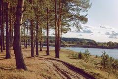 Förändrad medvetenhet i miljön arkivbilder