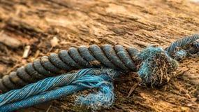 Föråldrat rep Arkivbild