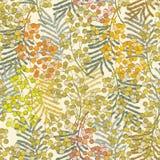 för ändlös tegelplatta för fjäder blommamodell för bakgrund seamless mimosa Royaltyfri Fotografi