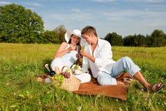 för ängpicknick för par lycklig sommar royaltyfria foton