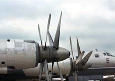 För ï¿ för bombplan Tu-95 för Bearï för ½ ½ ¿, främre del av flygplanet Arkivbilder