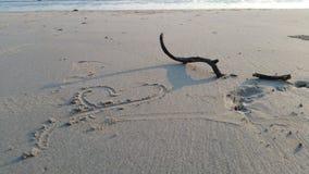 för öko för strand härlig phi thailand Arkivbilder
