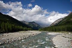 för östlig sayan shumak siberia bergflod för burya Arkivfoto