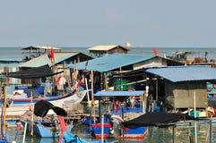 by för 2 fiska serie Royaltyfri Fotografi