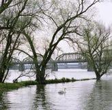 För Aare för schweizisk kanton för Aargau rapport bro metall Royaltyfri Bild