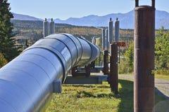 för alaska oljepipeline royaltyfri fotografi