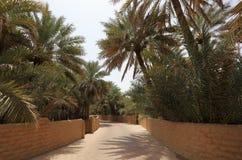 för aldhabi för abu ain oas Fotografering för Bildbyråer