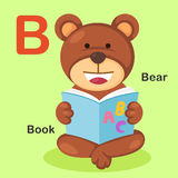 För alfabetbokstav för illustration djur B-björn, bok Arkivfoto