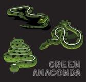 För anakondatecknad film för orm grön illustration för vektor Royaltyfri Fotografi