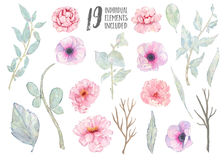 För anemonpion för vattenfärg förgrena sig handen målade rosa sidor för gräsplan isolerat på vit bakgrund Arkivbild