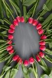 För Art Floral Background Round Frame för rosa nya vårtulpan botanisk hälsning för dag för ` s för kvinna för begrepp för lösa bl Fotografering för Bildbyråer