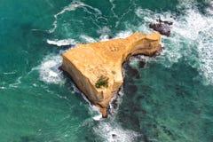 för Australien för 12 apostlar väg stor hav Royaltyfria Foton