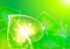 för bakgrundseps för 10 abstraktion leaf Royaltyfri Foto