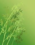 för bambueps för 10 bakgrund vektor för illustration Royaltyfri Bild