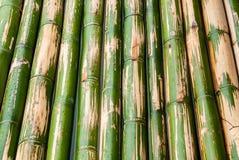 för bambueps för 10 bakgrund vektor för illustration Arkivbilder