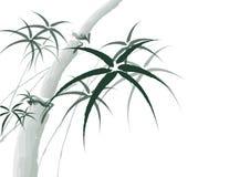 För bambumålning för vektor kinesisk bakgrund Fotografering för Bildbyråer