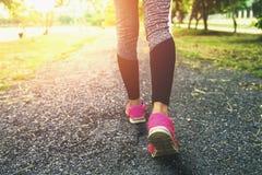 för benkvinna för slut övre spring Arkivfoto