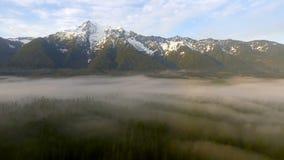 För bergkaskad för vit häst bagare Snoqualmie National Forest för vildmark för flod för stenblock för område lager videofilmer