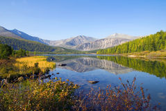 För bergkulle för natur sceniskt begrepp för plats för flod Royaltyfri Bild