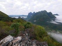För bergkulle för skog tropiskt dimmigt landskap Arkivfoto