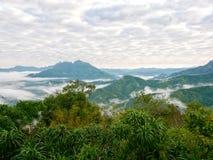 För bergkulle för skog tropiskt dimmigt landskap Arkivbild