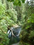 för bergström för exponering lång vattenfall Royaltyfri Bild