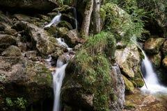 för bergström för exponering lång vattenfall Royaltyfri Foto