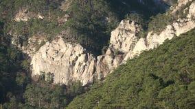 för bergström för exponering lång vattenfall stock video