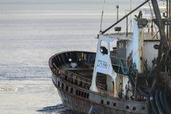 För besättningsman clammer Wando River ombord Fotografering för Bildbyråer