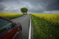 för bildandeväg för asfalt detaljerad struktur för personal för fyrkant Fotografering för Bildbyråer